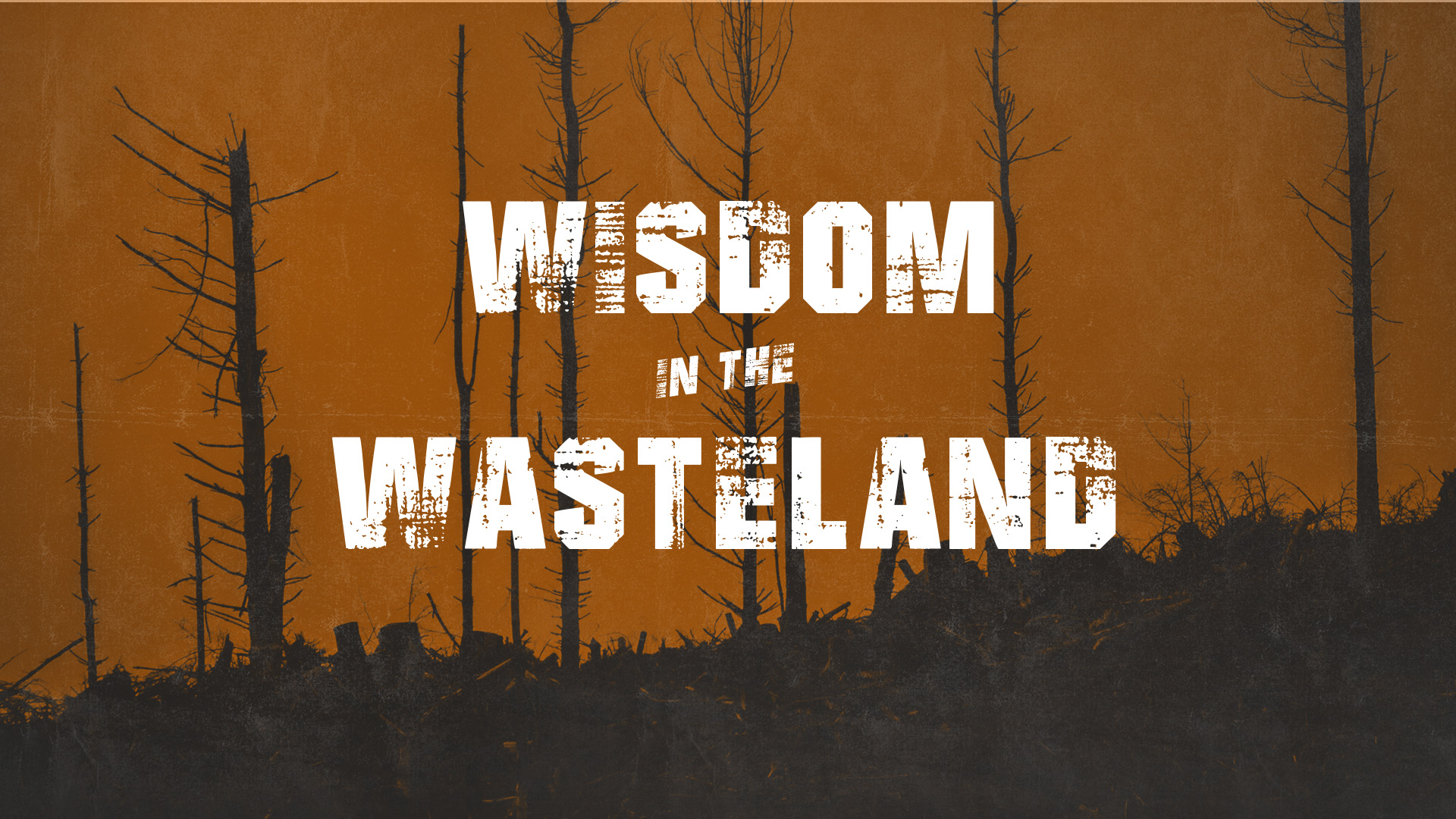 Wisdom in the Wasteland